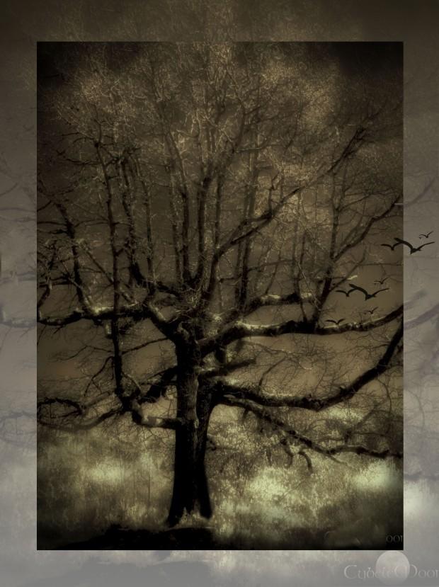 tree2ABCD