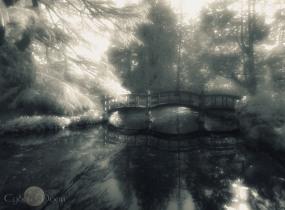 crossing the lagoon
