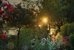 Sunset on the estuary garden