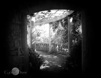 haunted pergola