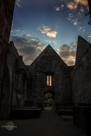 Muckross Abbey Ireland