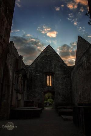 Muckross Abbey Ireland