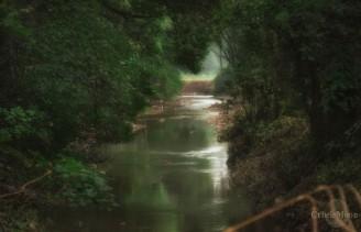 Blarney River
