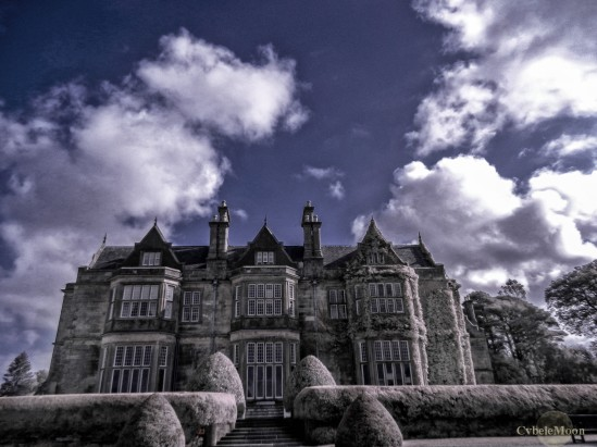 muckross house (1 of 1)a