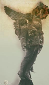 soldiersig