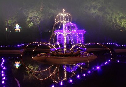 the fountain of ten lords a leaping- actually frog princes