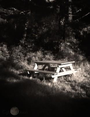 picnic in Sooke