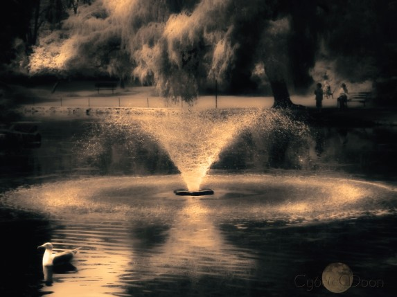 fountain beaconlightwarm