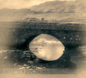 bridge donan