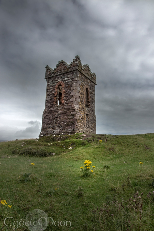 dingle tower