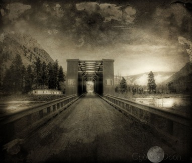 wooden bridge in the Okanagan