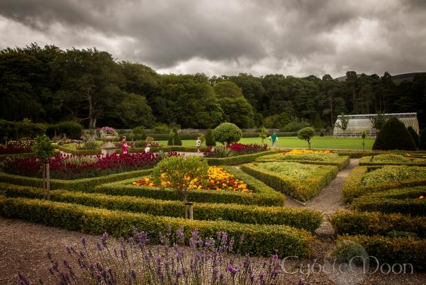 Muckross gardens