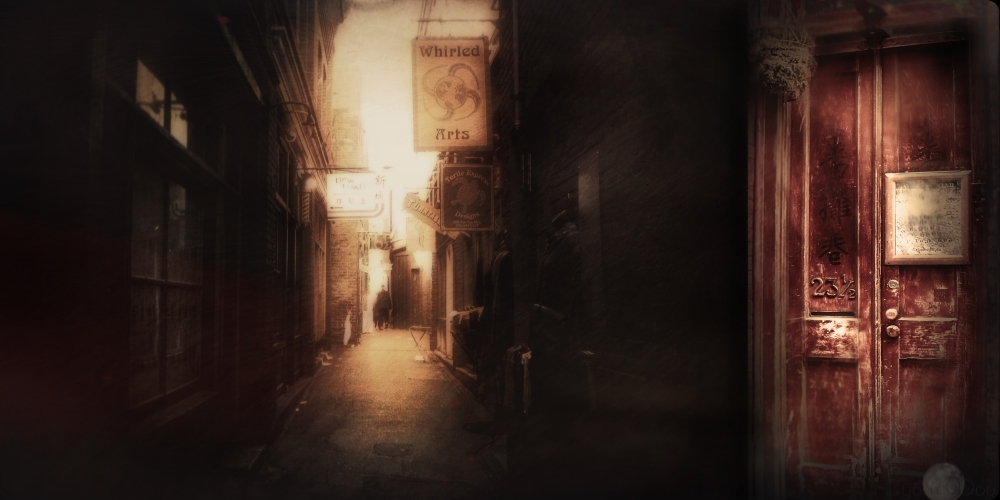 fantan alley in chinatown2