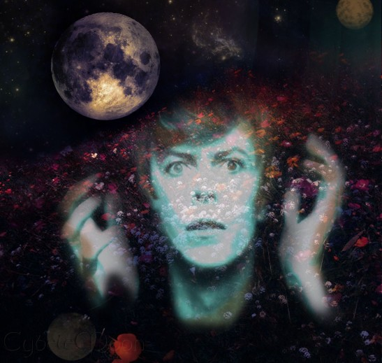 bowie space