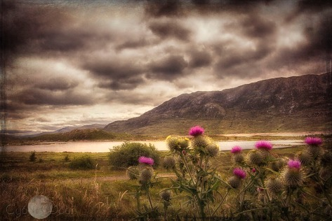 the highlands and loch