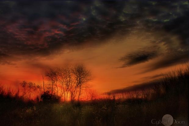 sunset symphony2