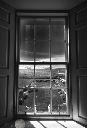 window monochrome