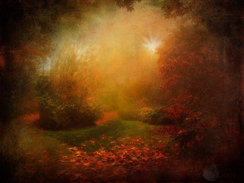 autumn-glorious2
