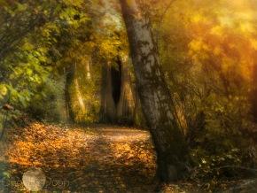autumnal-gold