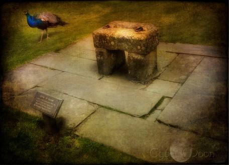 Stone of Scone on Moot Hill (replica)