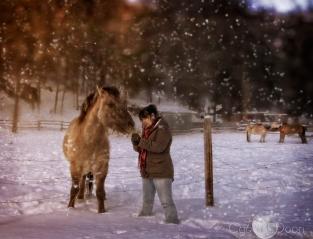 Becky's Pony