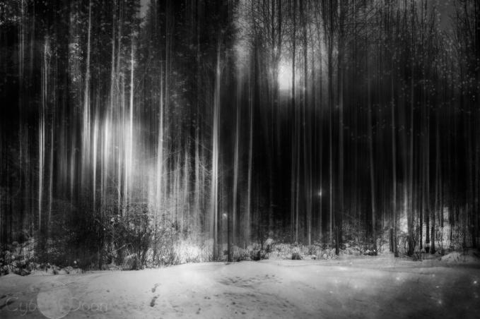 Magic in Monochrome