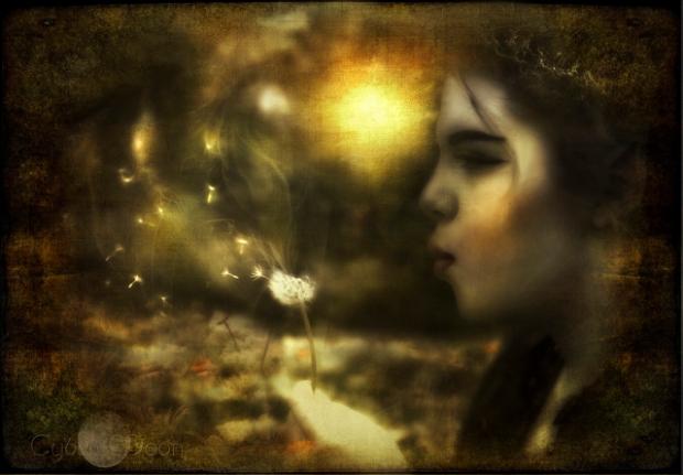 fairy-puffsglowsmall