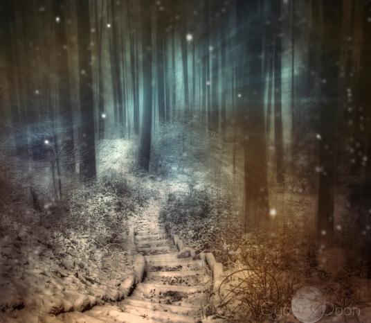 winter-steps