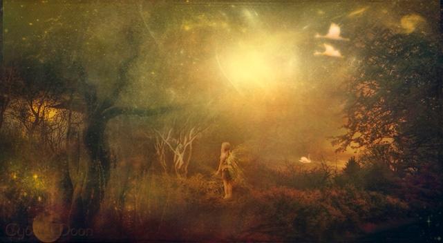 woodland-fantasy